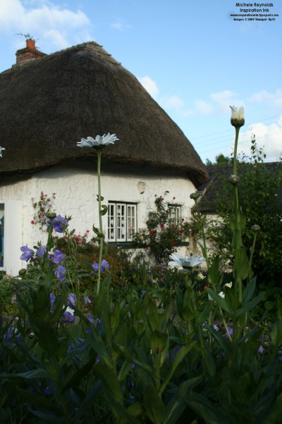 Thatched roof in adare 3