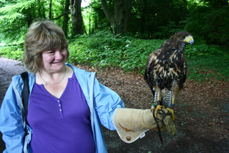 Michele with a hawk in Ireland