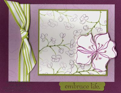 Embrace life class kit watermark