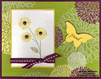 World treasures butterfly friend watermark