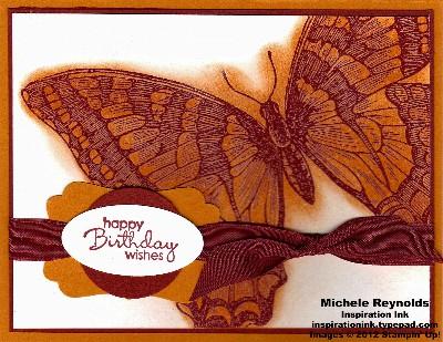 Swallowtail cherry and pumpkin butterfly watermark