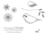 Language of friendship