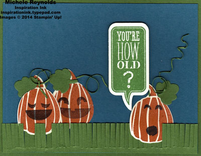 Fall fest pumpkin patch age question watermark