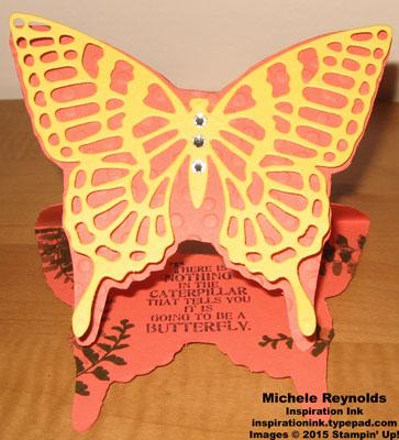 Butterfly basics michelle hundertmark 4 watermark