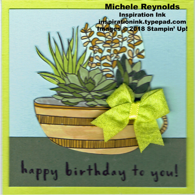 Fruit basket succulent birthday watermark