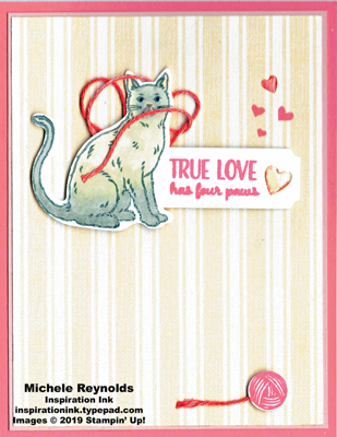 Nine lives siamese cat love watermark