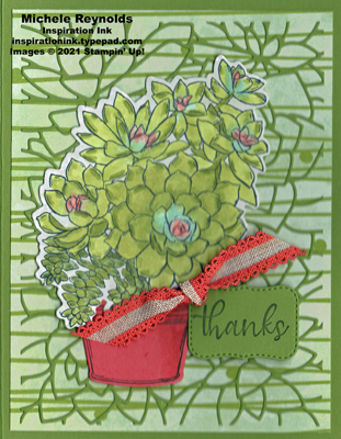 Simply succulents potted thanks watermark