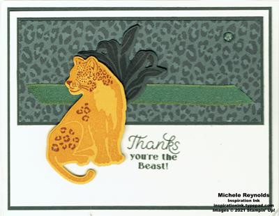 Wild cats jaguar beast thanks watermark